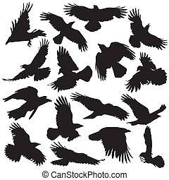 Crow silhouette set 02 - You guys can check the example what...