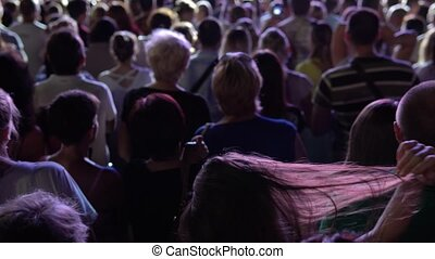 crowd of people dancing to music at a festive concert