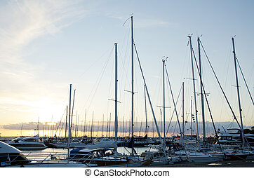 Crowd of sailing boats in harbor at evening