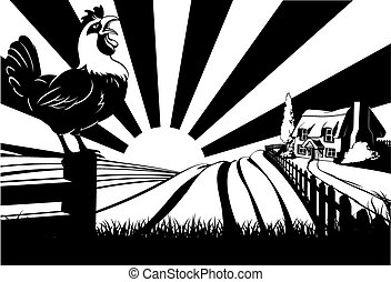 Crowing rooster farm house scene - A farm house thatched...