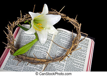 Crown Of Life - Crown of thorns and Easter lily on Bible.