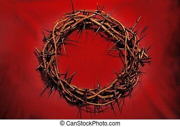 Crown of Thorns - crown of thorns - symbolic of the day He...