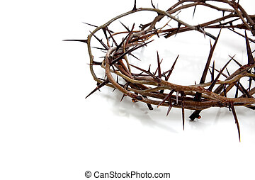 Crown of thorns on a white background - A crown of thorns on...