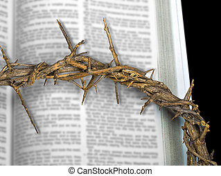 crown of thorns on Bible
