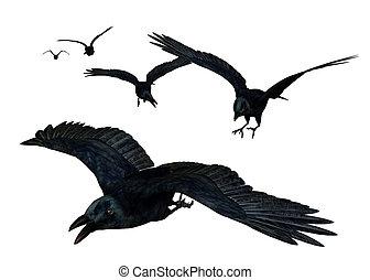 Crows Flying - 3D render