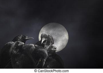 Crows in a dark full moon night