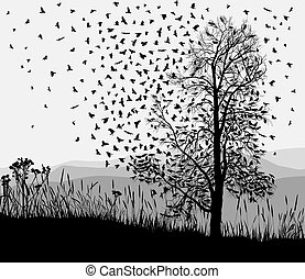 Crows in a tree chestnut