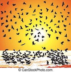 Crows in winter at sunset