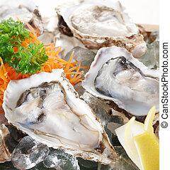 cru, huîtres