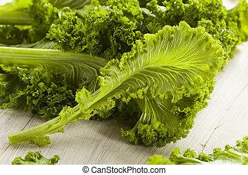 cru, orgânica, mostarda, verdes