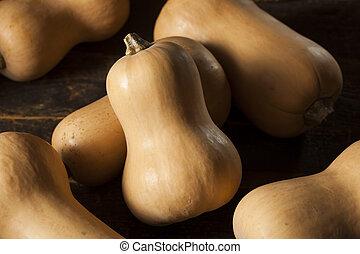 cru, orgânica, squash butternut