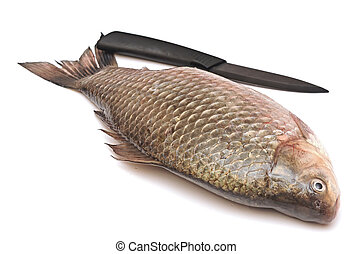 Crucian carp and knife isolated on white background