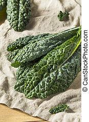 crudo, lacinato, verde, orgánico, col rizada