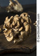 crudo, organico, maitake, funghi