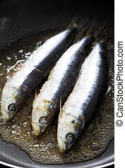 crudo, sardina, fish, cottura