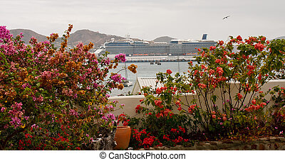 Cruise Ship in Port Beyond Tropical Garden