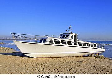 cruise ship on the shore