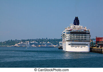 The cruise ship boards passengers for their Alaska cruise from the Port of Seattle. Lots of copyspace.
