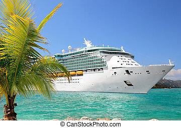 Cruise Ship - Luxury Cruise Ship Sailing from Port