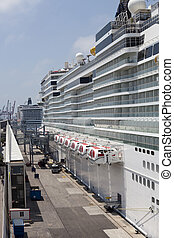 Cruise ships anchored in port