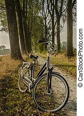 Cruiser Bike on a Dirt Path
