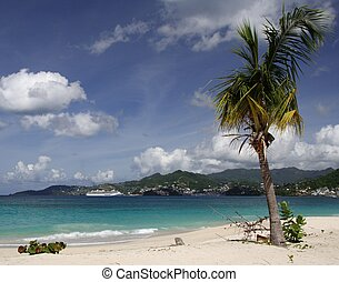 Cruising in paradise - Beautiful caribbean beach with a...