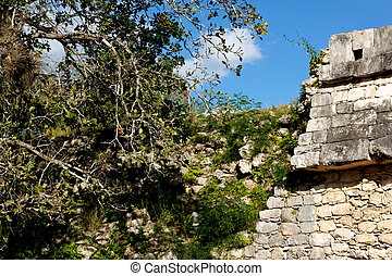 Crumbling Mayan Wall at Chichen Itza Landscape