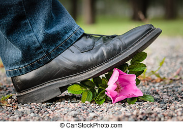 Crushing the Flower - Man crushes a rose by stepping on it