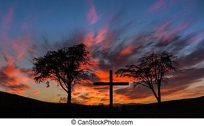 cruz, árboles