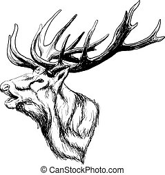 Crying Deep Art - hand drawn image of big white tail buck ...