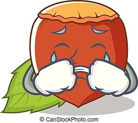 Crying hazelnut mascot cartoon style