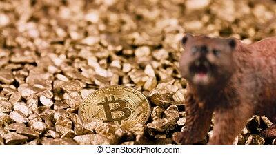 crypto, bitcoin, marché, ours, concept
