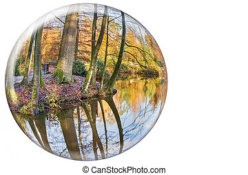 Crystal ball reflecting autumn tree trunks on white background