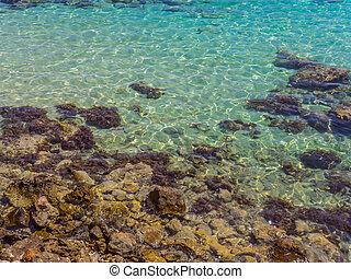 Crystal clear blue water and rocky shore