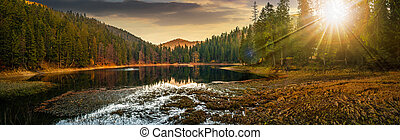 crystal clear lake near the pine forest in mountains at...