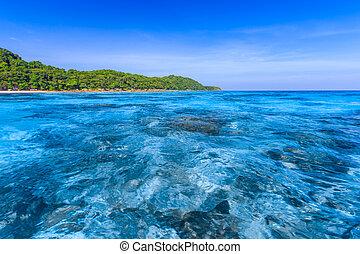 Crystal clear sea of tropical island, Similan, Thailand