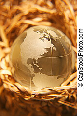 Globe in nest. Concept representing secure world. Shallow depth of field