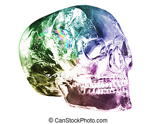 Crystal Skull  - Colorful Crystal Skull