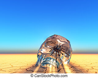 crystal skull covered with a tarentula  spider