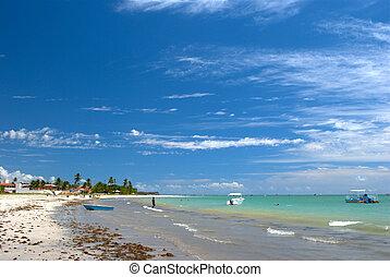 Crystalline green sea in Maceio, Alagoas, Brazil