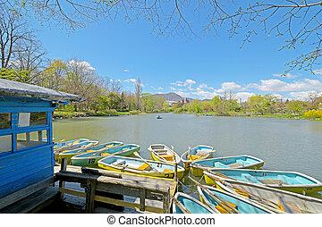 csónakázik, a parkban