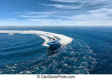 csónakázik, felülnézet, tenger, tengertől távol eső, gyorsaság