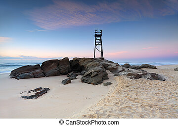 csörgőréce, tengerpart, nsw, ausztrália, igazságos, előbb, napkelte