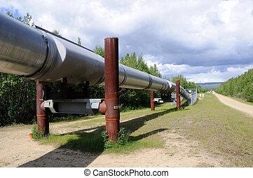 csővezeték, keresztül, alaszka, olaj