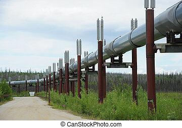 csővezeték, olaj