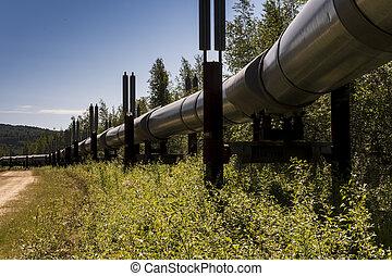 csővezeték, olaj, trans-alaska
