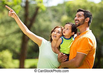 család, őrzés, fiatal, indiai, szabadban, madár