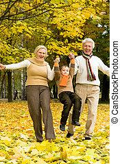 család, képben látható, a, természet