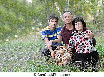 család, noha, egy, kosár, közül, gombák