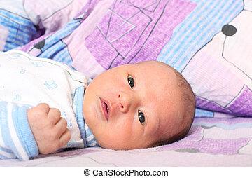 csecsemő, 12, napok, újszülött